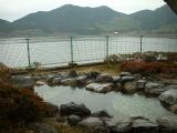 いこいの村いむた池 露天風呂