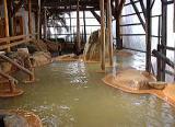 テイエム牧場温泉 内湯