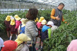保育園の児童が施設を見学(マンゴーハウス)