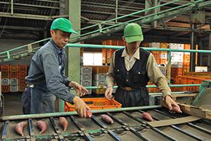 就職実績 : 農業関連企業